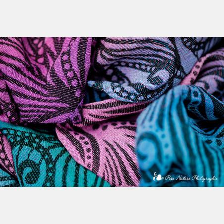 Farfalla Aura