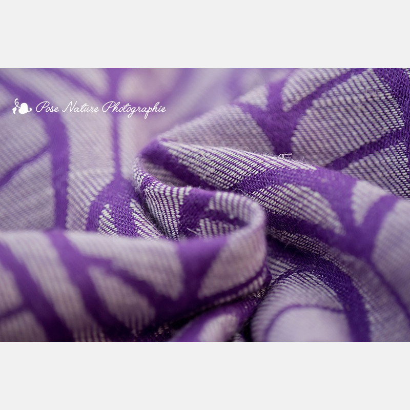 Laurus Purple Plum